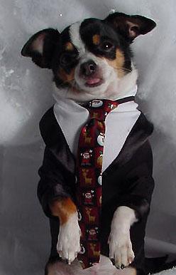suit&tie2